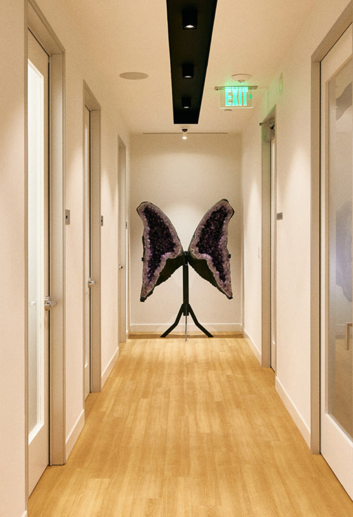 Beverly Hills Hallway with Amethyst Wing